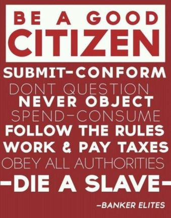 good_citizen